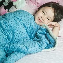 "Daverose Calming Weighted Blanket for Kids 5lbs 36""X48"" for 30-60lbs Kids | Plush Minky One Piece Design|Children Comfort Sensory Heavy Blanket (Azurite Minky Dot/Light Grey)"