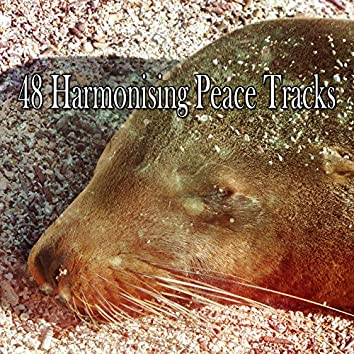 48 Harmonising Peace Tracks