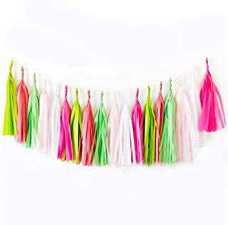 Full Win Shop 30 pcs Tassel 7ft DIY Party Hanging Decoration Mix Colors Paper Tassels Garland for Wedding Decor, Birthday ...