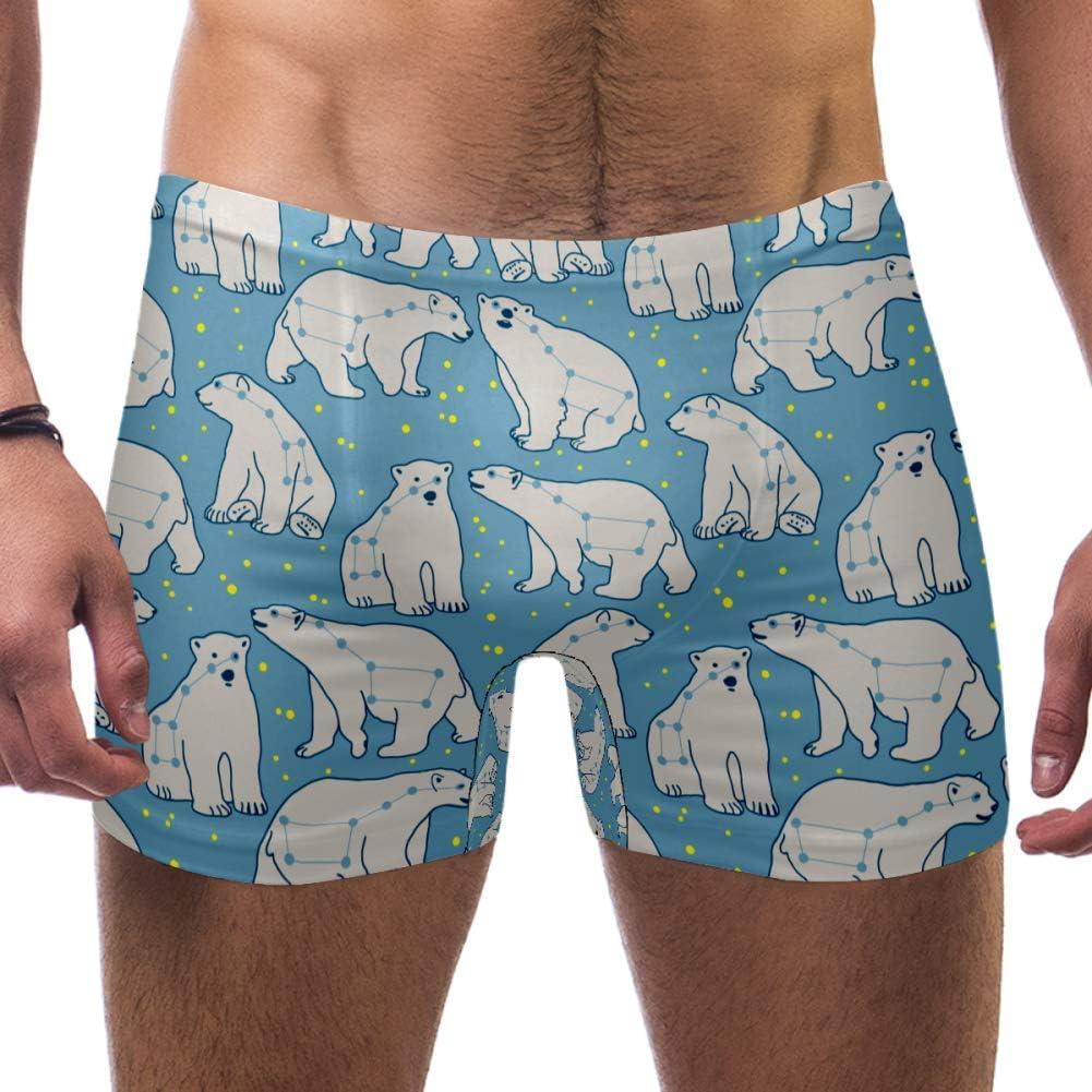 Dragon Sword Men's Swim Trunks Ursa Minor Polar Bear Pattern Short Swimsuit Briefs Square Leg Jammers Boardshorts