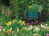 SWPOOELD Puzzle Adultes Bois 1000 Pieces Brouette dans Le Jardin Jouets pour Enfants Décoration De La Maison Cadeaux d'art 70X50cm