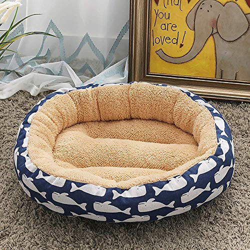 CWCD Beige/Blue + Whale Supplies Mascotas Moda Perro Kennel Cat Litter Pequeño Perro Medio Pet Picture Pista de Perro 50 * 50 * 14 cm Hamaca de cuna