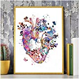 5D Diy Pintura Diamante Taladro Completo Kit De Punto De Cruz Diamante Kits De Pintura Para Adultos Rhinestone Bordado Diamante Arte Corazón Órganos Humanos Anatomía Médica Medicina