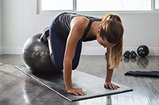 SKLZ Sport Performance 65cm Exercise Ball with Self-Guided Workout Illustrations
