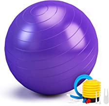 Smartor Exercise Ball 65CM Fitness Ball, Anti-Burst Stability Ball with Quick Pump, Professional Balance Ball for Pilates,...