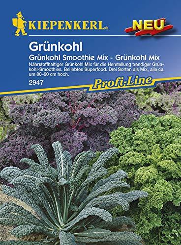 Kiepenkerl 2947 Grünkohl Smoothie Mix - Grünkohl Mix (Grünkohlsamen)