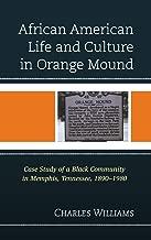 الأفريقيين الأمريكيين Life و الثقافة في برتقالي اللون الأبيض: جراب فريد من الدراسة باللون الأسود مجتمع في ممفيس ، Tennessee, 1890–1980