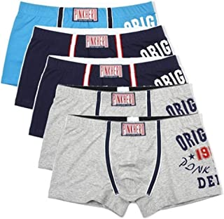 Men's underwear 5PCS Fit Male Panties And Style Men's Underwear Cotton Printing Men's Boxer Short chunjiao (Color : Mint, Size : XLarge)