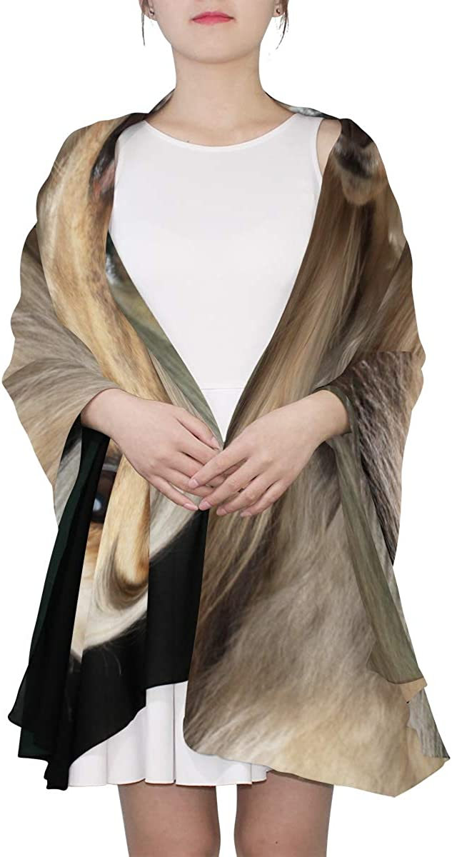 Elegant Afghan Hound Unique Fashion Scarf For Women Lightweight Fashion Fall Winter Print Scarves Shawl Wraps Gifts For Early Spring
