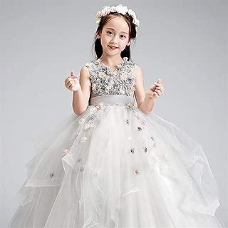 Luxury Children Dress Girls Princess Dress Flower Girl Dress Princess Dress Tutu Girl Singing and Piano Performance Clothing Presided Over Long Applique Dress ryq (Color : Grey, Size : 150cm)