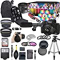 Canon EOS M50 Mark II Mirrorless Digital Camera with 15-45mm Lens Kit (Black) + Wide Angle Lens + 2X Telephoto Lens + Flash + SanDisk 32GB SD Memory Card + Video Accessory Bundle by Paging Zone- Canon Intl
