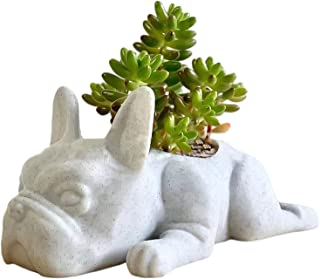 Mini Animal Planter Resin Flower Pots, Puppy Dog Succulent Pot Small Air Plant Containers Indoor Outdoor, Cute Ornaments D...