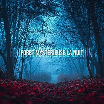Forêt mystérieuse la nuit: Méditation avec la nature, Proche de la nature, Sons nocturnes apaisants, Bruits d'animaux
