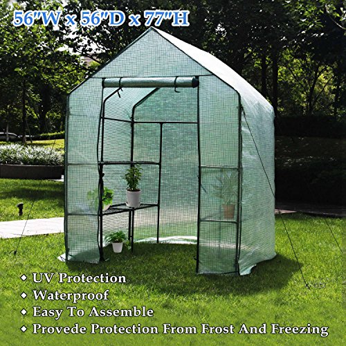Deluxe Green House