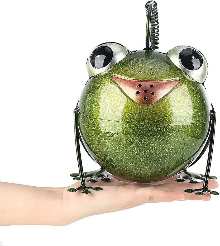 cici Max 75% OFF store Frog Watering Can for - House Plan Max 47% OFF Bonsai Kids Indoor