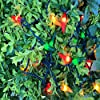 18 FT Red Chili Pepper String Lights, 35 Count Red Green and Yellow Home Decorated Lights Set, for Indoor Party, Garden, Patio. #5
