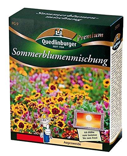 Quedlinburger Sommerblumenmischung Bild