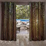 ScottDecor California Tree Nature Outdoor Noise Reducing Curtains for Patio Porch Gazebo Garden Redwood Forest in California and Sunset Picture Print 76W x 108L Inch