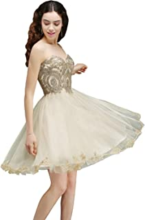 Women's Lace Applique Strapless Short Mini Cocktail Homecoming Dresses