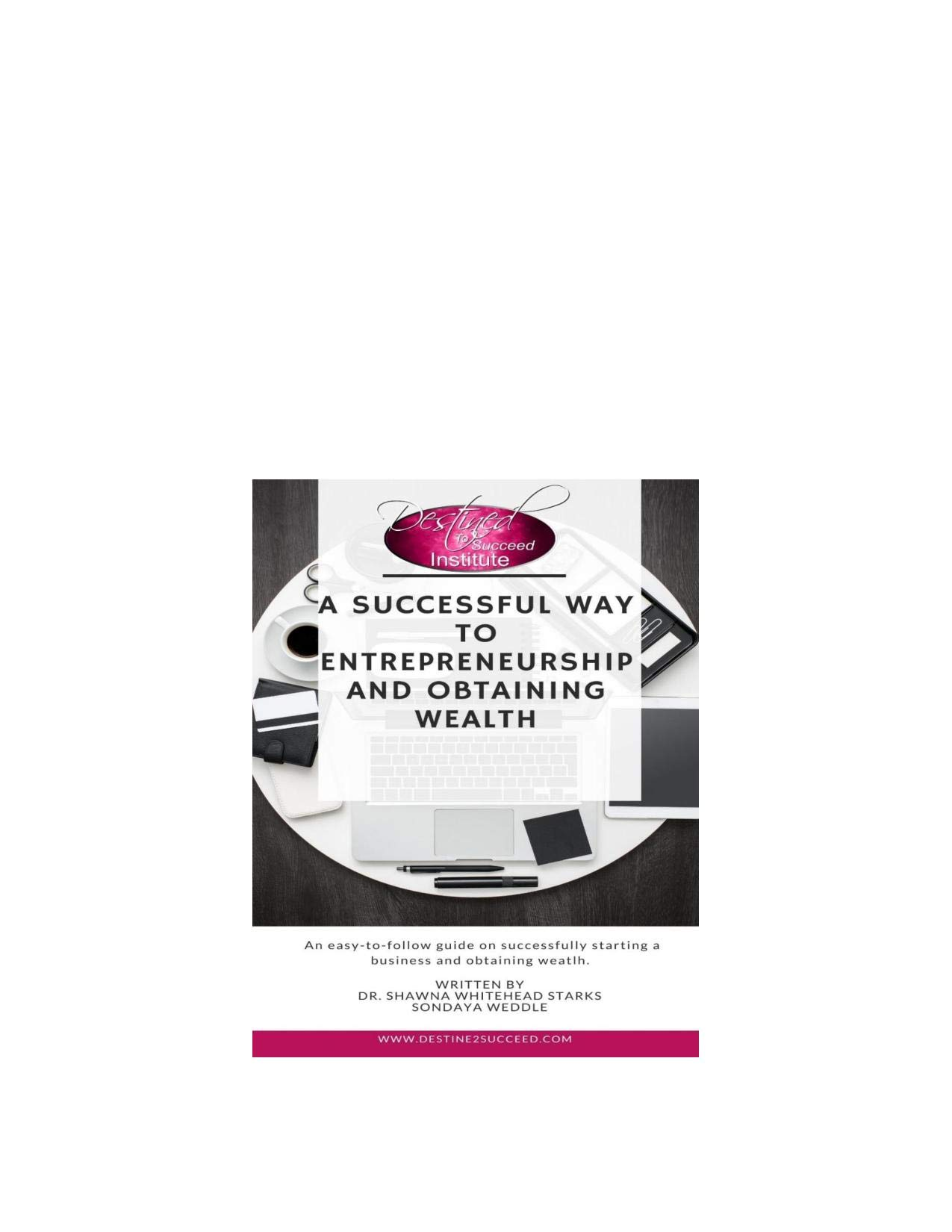 Destined to Succeed Institute: A Successful Way To Entrepreneurship and Obtaining Wealth