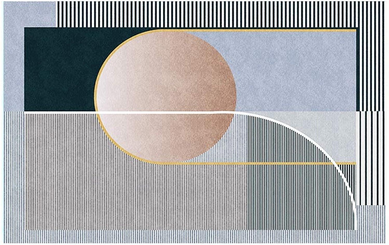 hermoso XIERUG Alfombra Nórdica Moderno Minimalismo Minimalismo Minimalismo En S Sala Manta De Mesa De Té Casa Ligero Habitación Tienda Completa Habitación (Color   G, Tamao   80x160cm)  ventas calientes