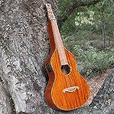 Imperial Royal Hawaiian Limited Edition Weissenborn Style Lap Steel Guitar...