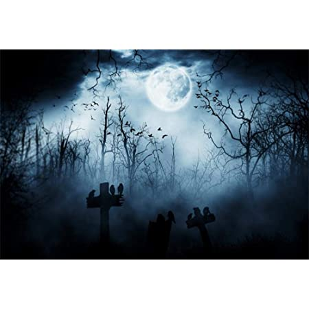 10x6.5ft Bright Full Moon and Bats Photography Backdrop for Halloween Themes Event Use Background Photo Booth Props LHFU564