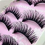 False Eyelashes 5 Pairs 5 Styles With Fake Eyelashes Applicator Natural look Messy Handmade