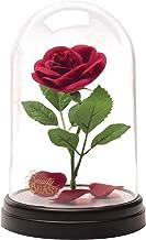 Paladone Disney Beauty and the Beast - Enchanted Rose Light (PP4344DPV2), meerkleurig