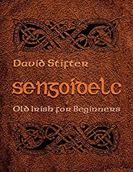 Sengoidelc: Old Irish for Beginners (Irish Studies) : David Stifter