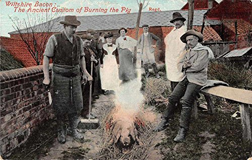 Wilshire England Wiltshire Bacon Burning the Pig Antique Postcard J72505