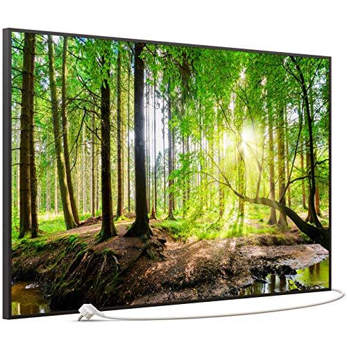 STEINFELD Bild Infrarotheizung | Made in Germany | viele Motive 350-1200 Watt Rahmen schwarz (900W, 067 Wald Panorama)