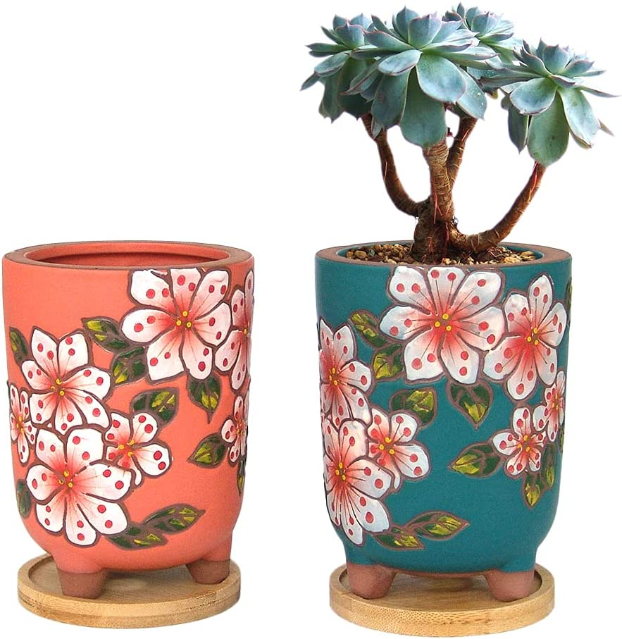 Super sale period limited Summer Impressions 4.13 Inch Beauty products Hand Painted Plante Succulent Round