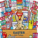 Easter Care Package (60ct) - Candy, Snacks, Toys, Plush Bunny, Chocolate Cookies - Gift Box Bundle Basket Fillers Stuffers Present - Kids, Adults, Boys, Girls, College Student, Child, Grandchildren, Toddlers by Accardi Products LLC