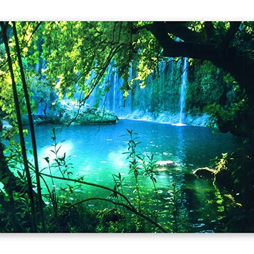 murando Fototapete Natur 350x256 cm Vlies Tapeten Wandtapete XXL Moderne Wanddeko Design Wand Dekoration Wohnzimmer Schlafzimmer Büro Flur Landschaft Wasserfall c-B-0132-a-a