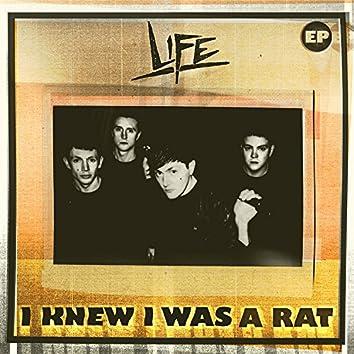 I Knew I Was A Rat