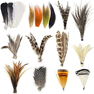 YZD Fly Tying Materials Starter Kit 12 Species Fly Tying Feathers Hair