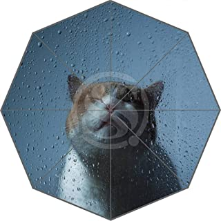 Fashion Custom Cats Painting Art Umbrella Sunny and Rainy Sunscreen Anti Hyococ (Color : Pink)