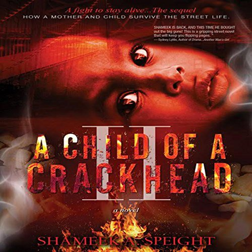 A Child of a Crackhead II audiobook cover art