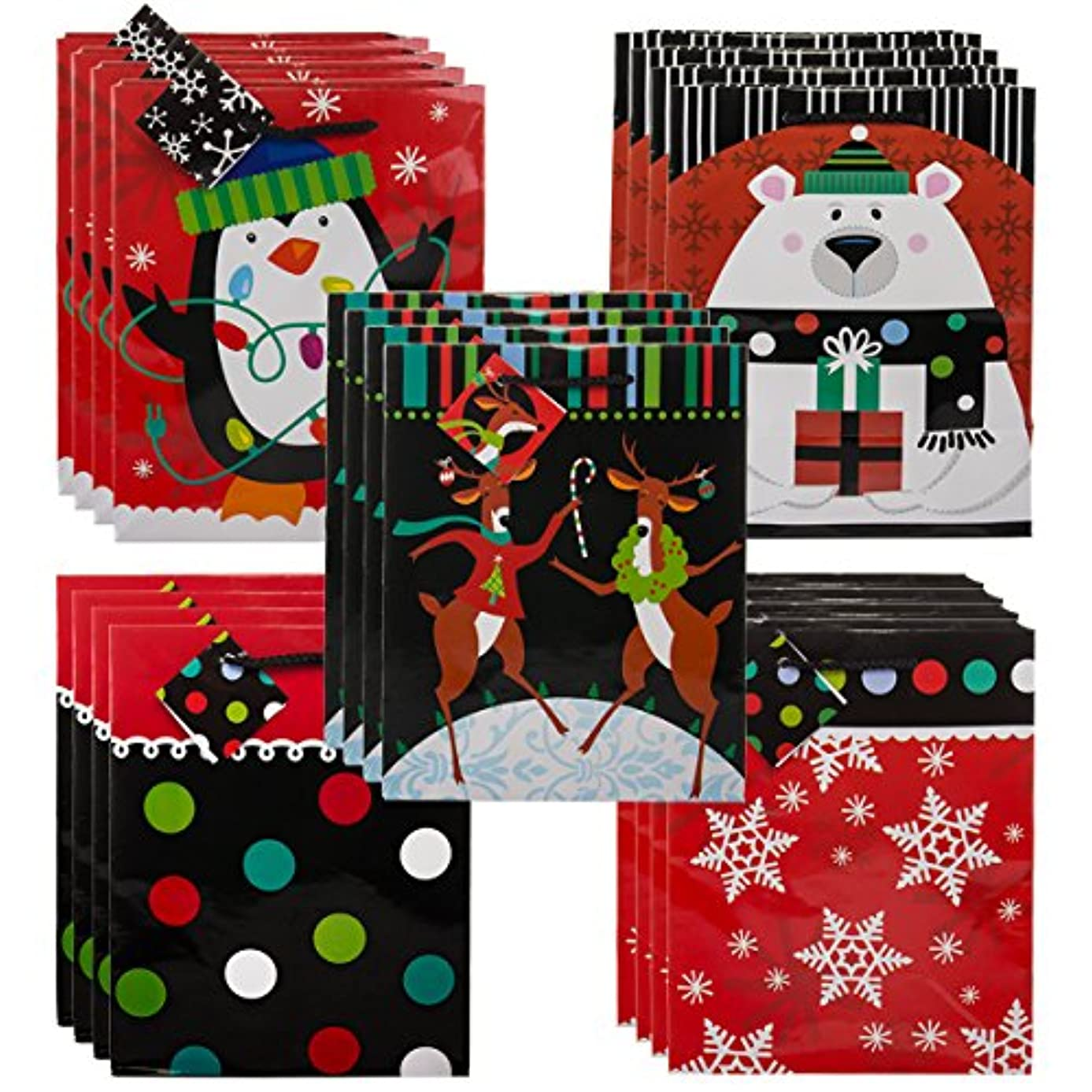 Gifts Plus (Set of 20 Medium Bags with Rope Handles Name Tags, Christmas Men Women Kids
