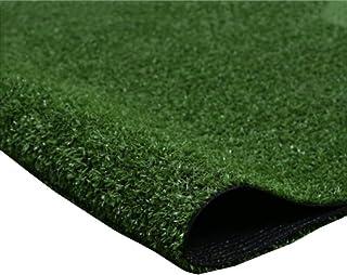 YNFNGX Artificial Grass Carpet Outdoor Fake Grass Mat Natural Realistic Garden Synthetic Balcony Terrace 10mm Pile Height ...