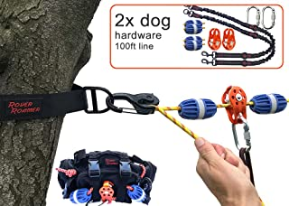 100ft, 2-Dogs - Sky Track Aerial Dog Run/Portable Overhead Trolley System for Two Dogs: Camping, Fence-Less Yards, Parks, Outdoor Events. Travel-Friendly. 5 min Set-up.