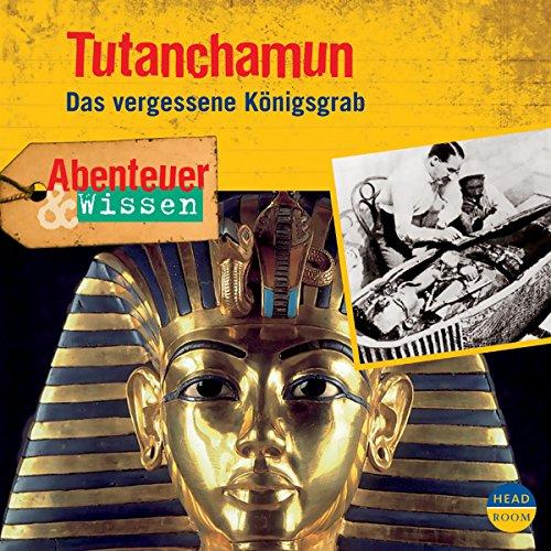Tutanchamun - Das vergessene Königsgrab audiobook cover art