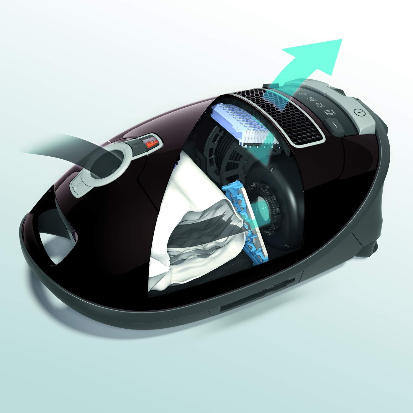 Miele SF-HA 50 Airclean - Filtro para aspiradores S 4 y S 5 ...