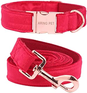 fancy dog leash