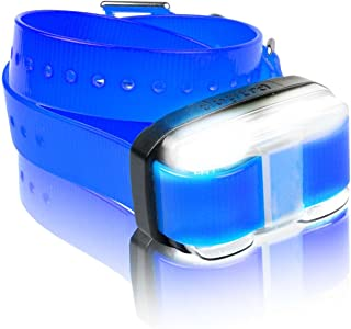 Dogtra Edge Additional Receiver Blue Strap