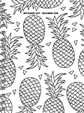 2018 Color Me Pineapples Medium Weekly Monthly Planner