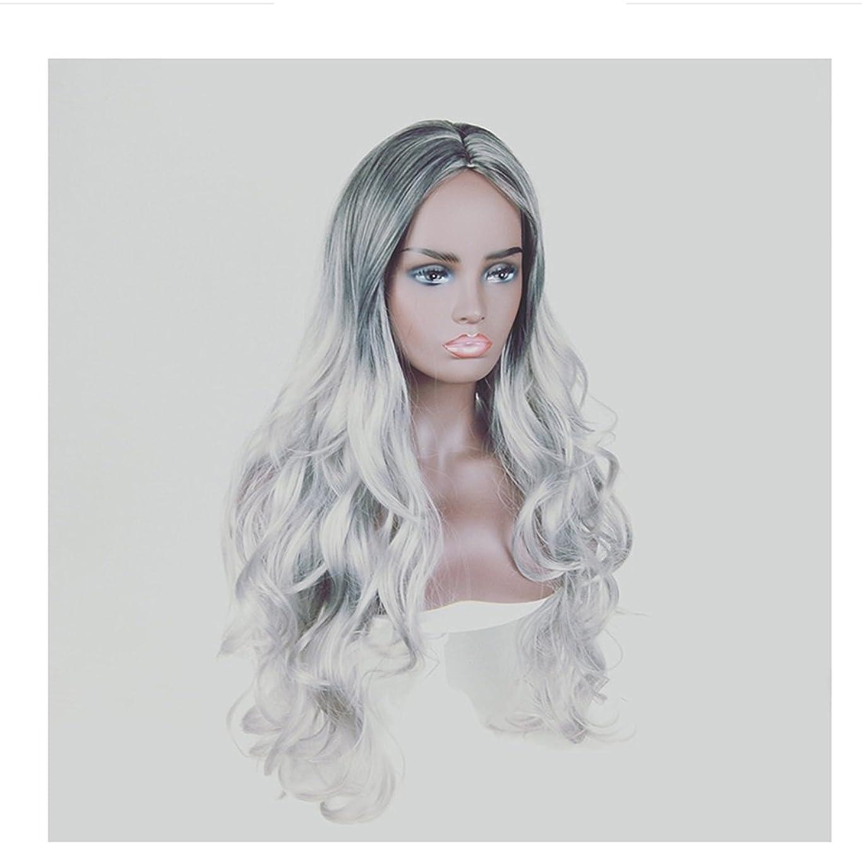 検査パトワ終わりJIANFU 人形の黒コスプレウィッグ女性のための人間の髪ロングバンズウィッグ黒の女性のためのナチュラルカラーグラデーション長いカーリーウィッグ220g (Color : Black Gradient Pure White)