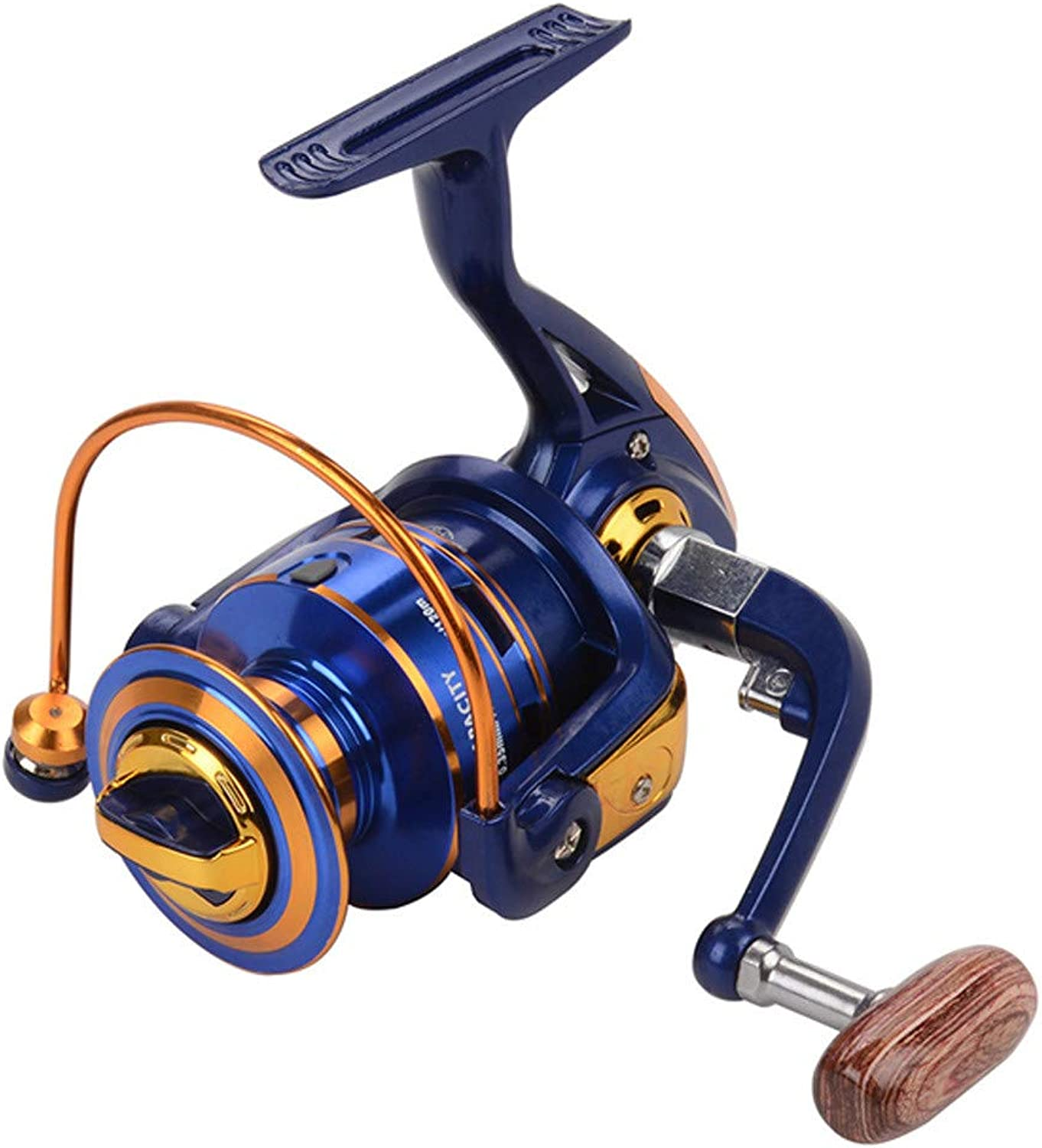 Fishing reels for Saltwater Freshwater Fishing Spinning Fishing Reel 12 Bearings Left Right Interchangeable Handle with Double Drag Brake System (Size   2000)