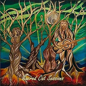 Sacred Cat Sessions